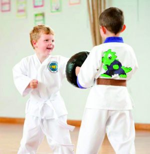 Little Dragons Taekwondo Lessons