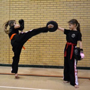 Junior Kickboxing lessons