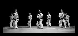 Taekwondo-Line-Up