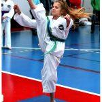 Taekwondo Kick