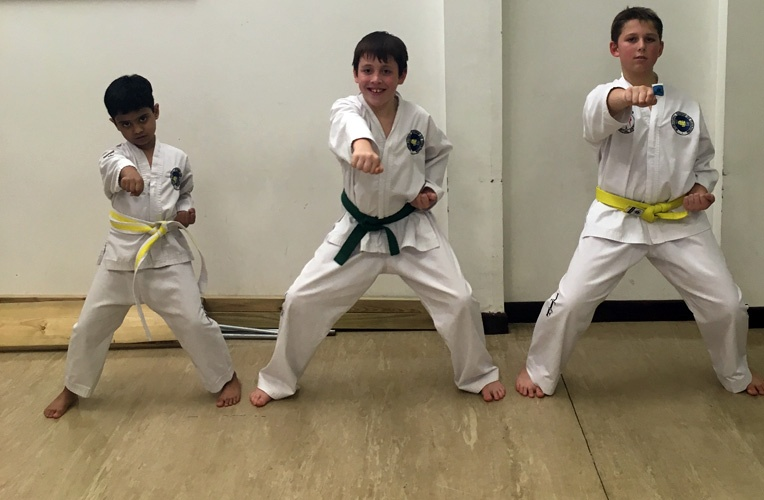 Taekwondo sitting stance badge
